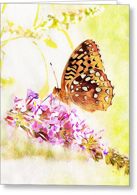 Butterlfy Greeting Cards - Elegance Greeting Card by Tina  LeCour