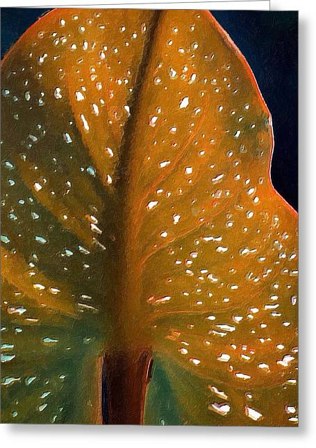 Elephant Ear Plant Greeting Cards - Elephant Ear Greeting Card by Bonnie Bruno