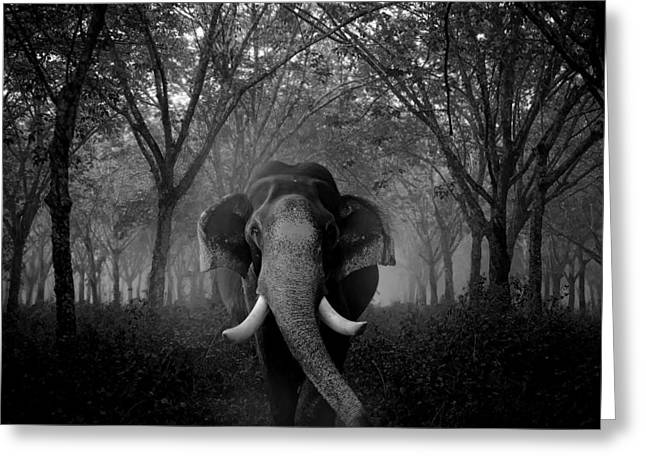 Mystical Landscape Greeting Cards - Elephant of the Mist Greeting Card by Arun Cv