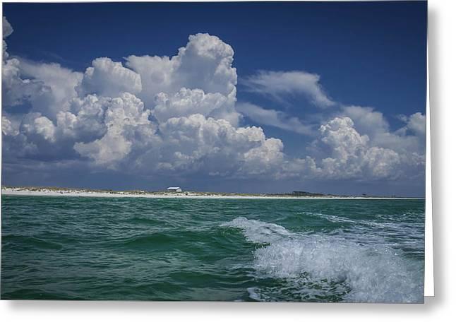 Panama City Beach Greeting Cards - Emerald Coast 2 Greeting Card by Debra Forand