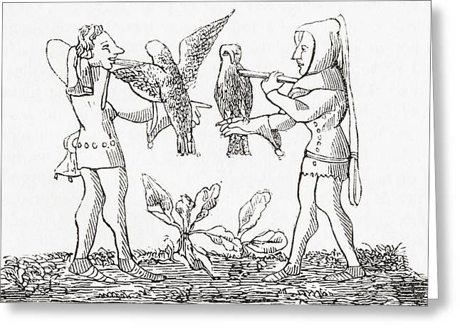 Hunting Bird Drawings Greeting Cards - Falconry In The Middle Ages. From Le Greeting Card by Ken Welsh