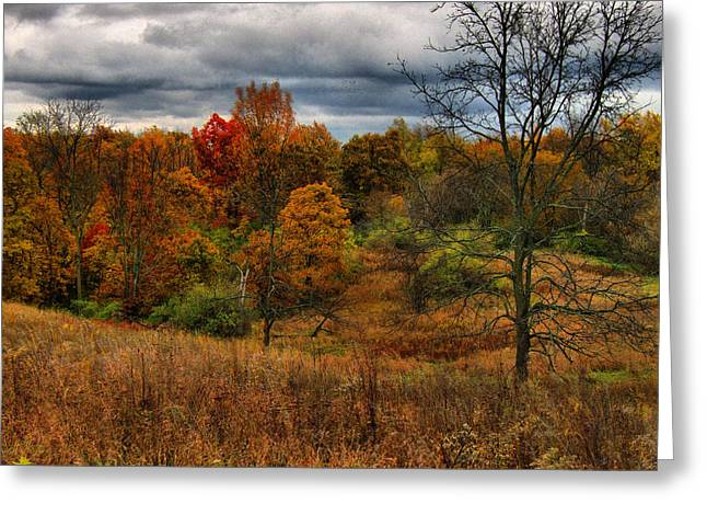 Hovind Greeting Cards - Fall Colors Greeting Card by Scott Hovind
