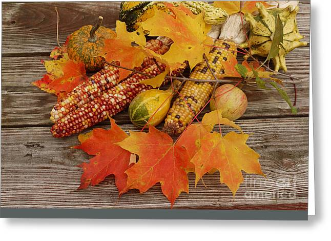 Log Cabins Greeting Cards - Fall still life Greeting Card by Tony Craddock