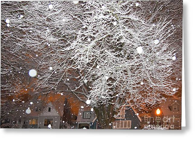 Falling Snow In A Neighborhood Greeting Card by David Buffington