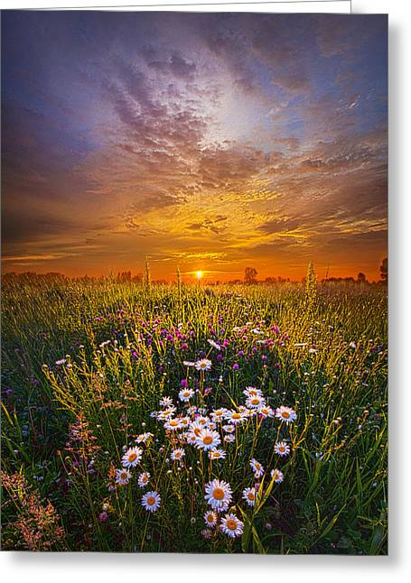 Father's Day Greeting Card by Phil Koch