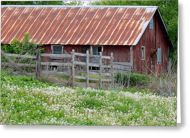 Outbuildings Greeting Cards - Field of Fluff Greeting Card by Wild Thing