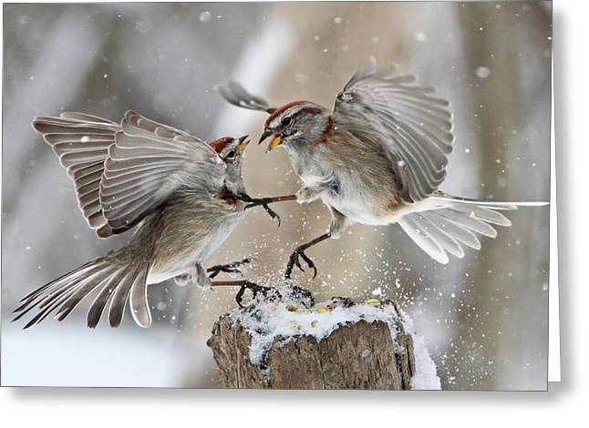 Sparrow Greeting Cards - Fight Club Greeting Card by Mircea Costina