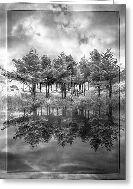 White River Scene Greeting Cards - Fire in Black and White Greeting Card by Debra and Dave Vanderlaan
