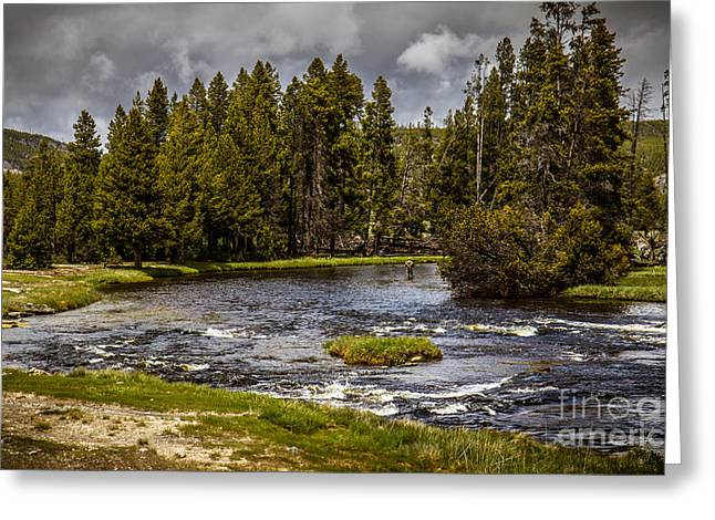 Rainbow Trout Greeting Cards - Firehole River II Greeting Card by Robert Bales