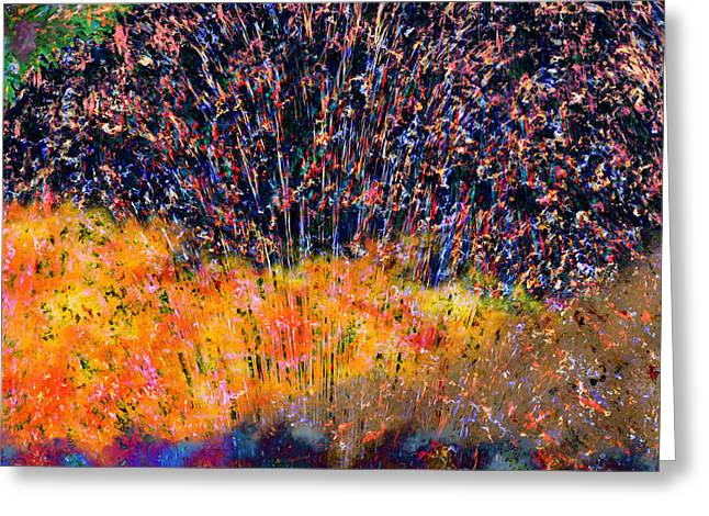 Recently Sold -  - Festivities Greeting Cards - Fireworks Greeting Card by Christopher Gaston