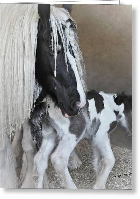 Gypsy Vanner Horse Greeting Cards - First Moments Greeting Card by Terry Kirkland Cook