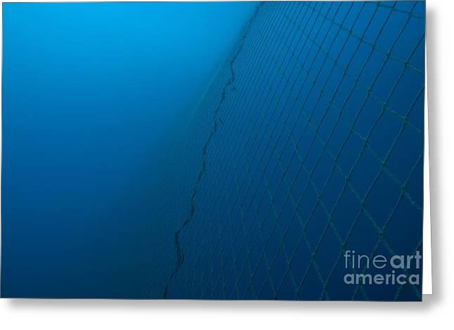 Netting Greeting Cards - Fishing Net Underwater Greeting Card by Angel Fitor