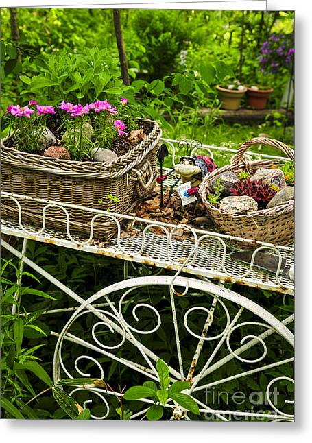 Lifestyle Greeting Cards - Flower cart in garden Greeting Card by Elena Elisseeva