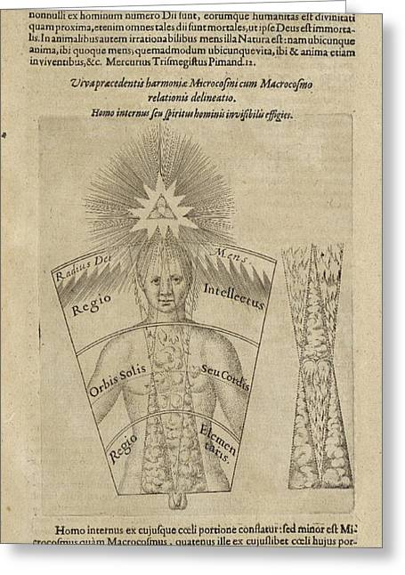 Fludd Greeting Cards - Fludds De Microcosmo Interno, 17th Greeting Card by Folger Shakespeare Library