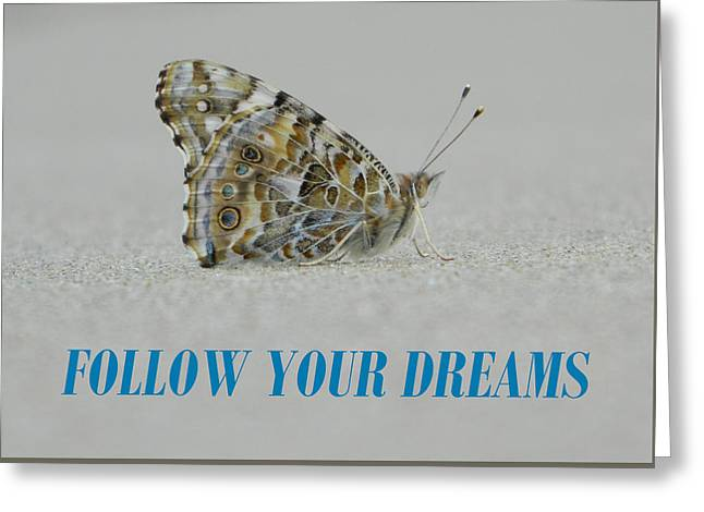 Anti Greeting Cards - Follow Your Dreams Greeting Card by Gallery Of Hope