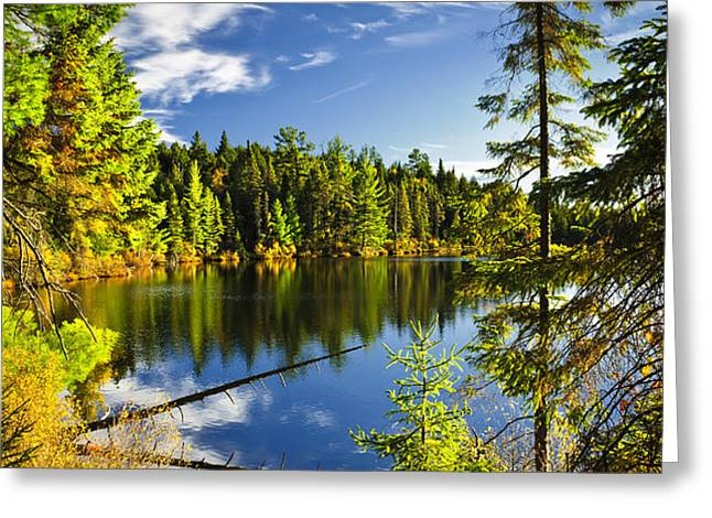 Forest and sky reflecting in lake Greeting Card by Elena Elisseeva