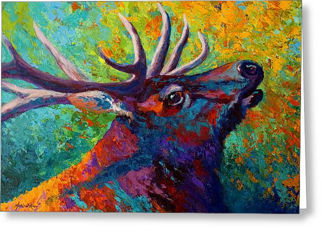 Elk Wildlife Greeting Cards - Forest Echo - Bull Elk Greeting Card by Marion Rose