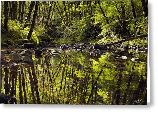 Forest Reflections Greeting Card by Leland D Howard