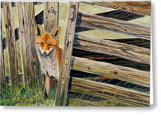 Fox At The Gate Greeting Card by Dag Peterson