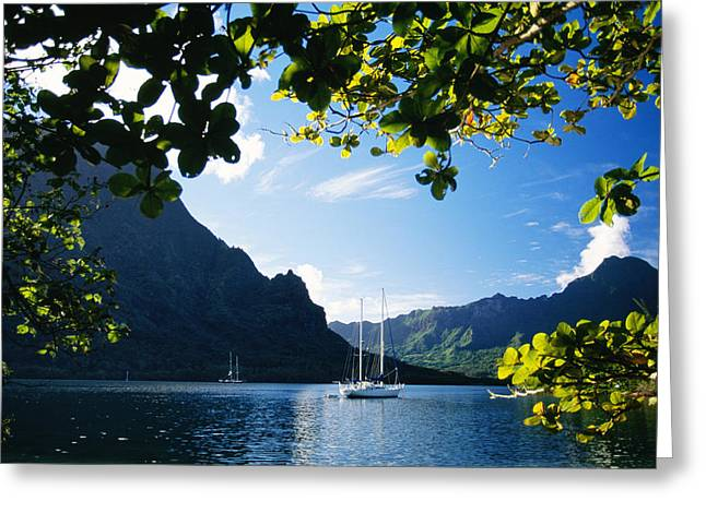 Across Greeting Cards - French Polynesia, Moorea Greeting Card by Dana Edmunds - Printscapes