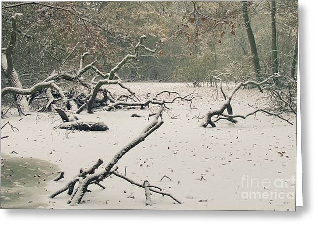 Cold Photographs Greeting Cards - Frozen Fallen Greeting Card by Andy Smy