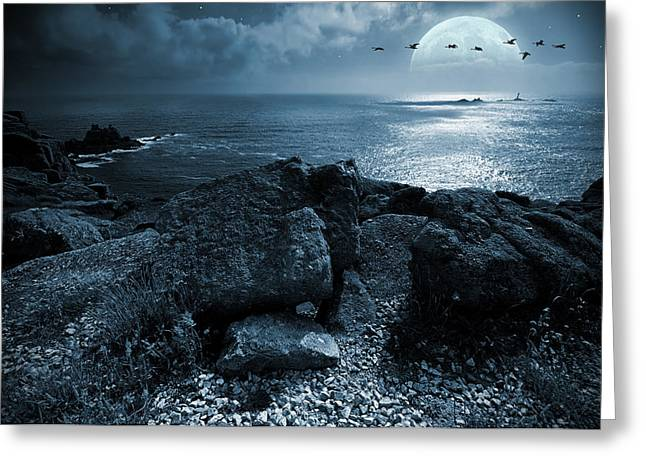 Birds Moon Greeting Cards - Fullmoon over the ocean Greeting Card by Jaroslaw Grudzinski