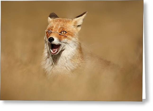 Funny Fox Greeting Card by Roeselien Raimond