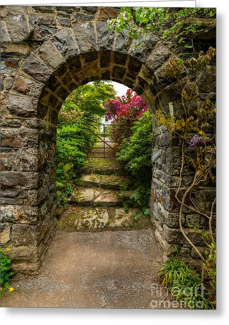 Arch Greeting Cards - Garden Arch Greeting Card by Adrian Evans