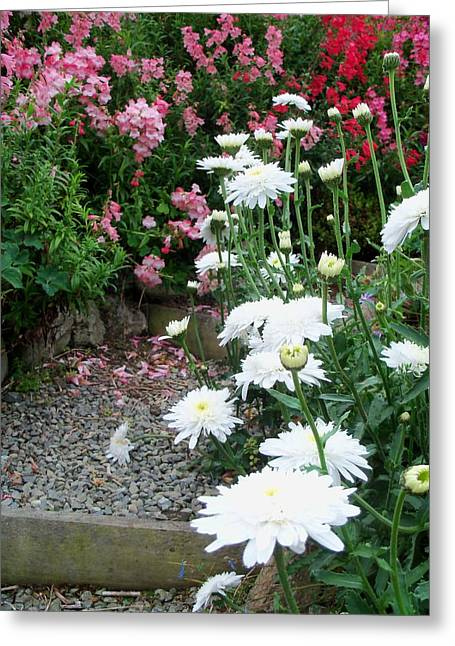 Print Photographs Greeting Cards - Garden Path Greeting Card by Nancy Pauling