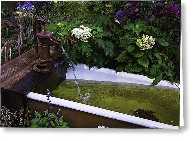 Garden Water Pump Greeting Card by Garry Gay