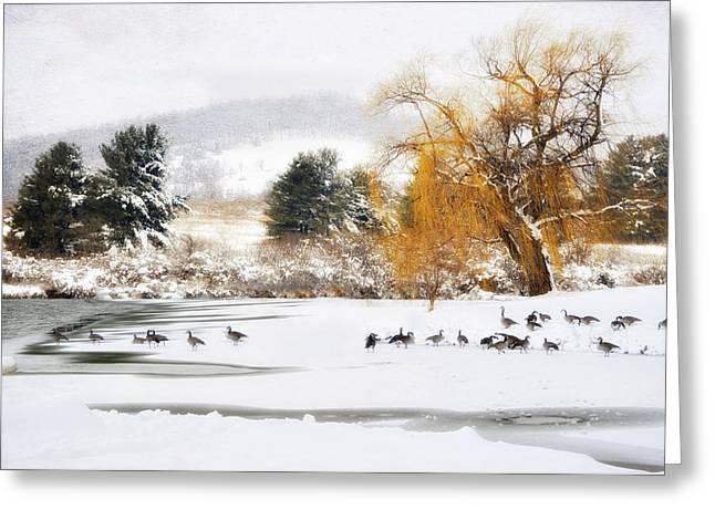 Rockbridge County Greeting Cards - Geese At The Lake  Greeting Card by Kathy Jennings