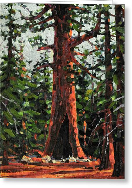 Sequoia National Park Greeting Cards - General Sherman Greeting Card by Donald Maier
