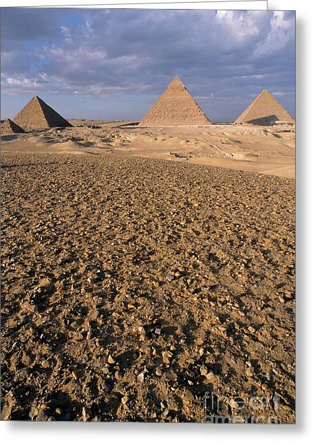 Giza Pyramids Greeting Card by Sami Sarkis