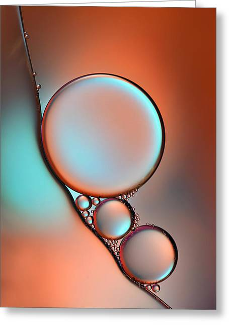 Macro Greeting Cards - Glimmer Greeting Card by Heidi Westum