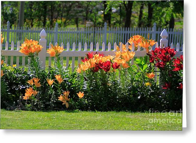 Flora Artwork Greeting Cards - Gods Creation-12 Greeting Card by Robert Pearson