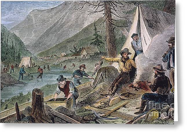 Sierra Gold Greeting Cards - Gold Mining, 1853 Greeting Card by Granger