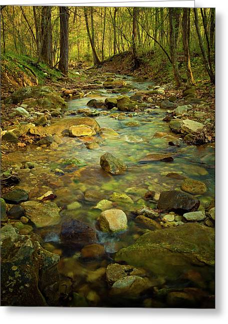 Arkansas Greeting Cards - Golden Days Greeting Card by Iris Greenwell