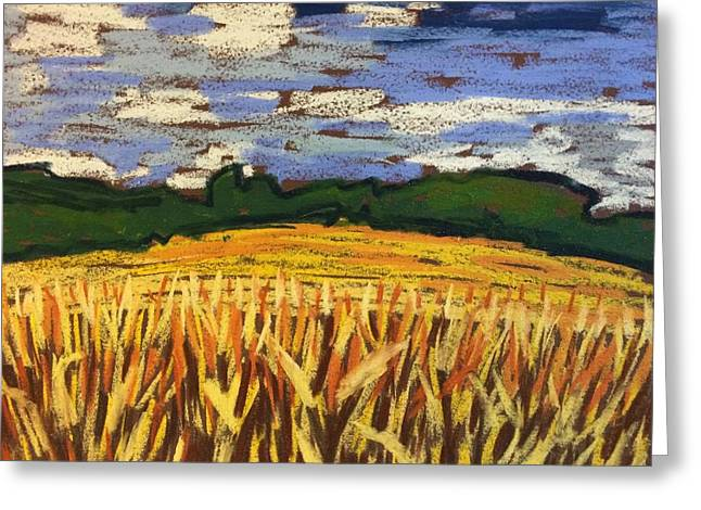 Warm Summer Pastels Greeting Cards - Golden Fields Greeting Card by Tim Bruneau