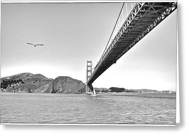 Golden Gate Bridge Greeting Card by John Scharle
