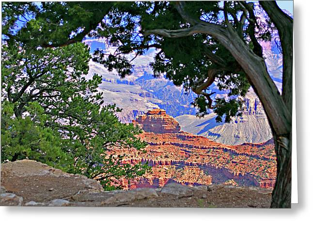 Travel Arizona Greeting Cards - Grand Canyon Framed by Nature Greeting Card by Linda Phelps