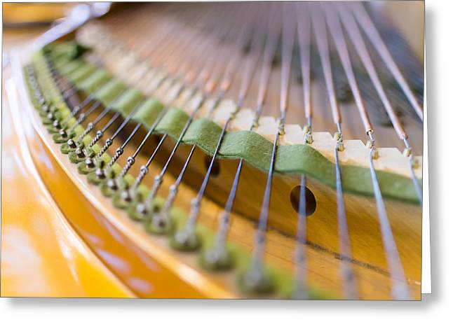 Mechanism Photographs Greeting Cards - Grand Piano Strings in Closeup  Greeting Card by John Williams