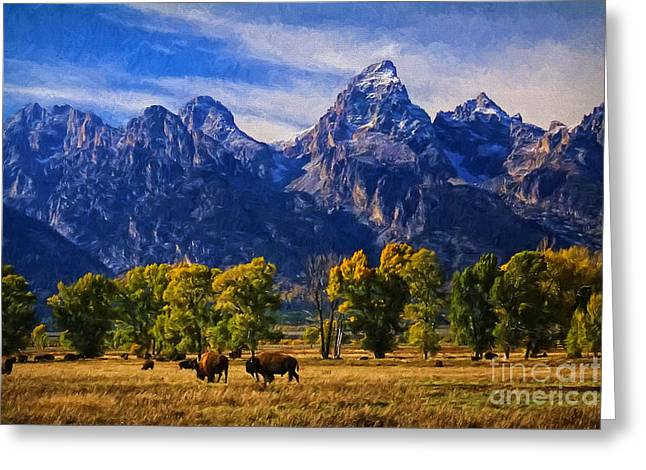 Grand Teton National Park Bison Greeting Card by Priscilla Burgers