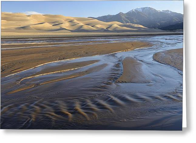 Great Sand Dunes National Preserve Greeting Cards - Great Sand Dunes Greeting Card by Christian Heeb