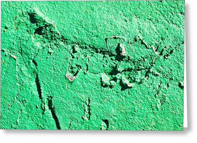 Green Background Greeting Card by Tom Gowanlock
