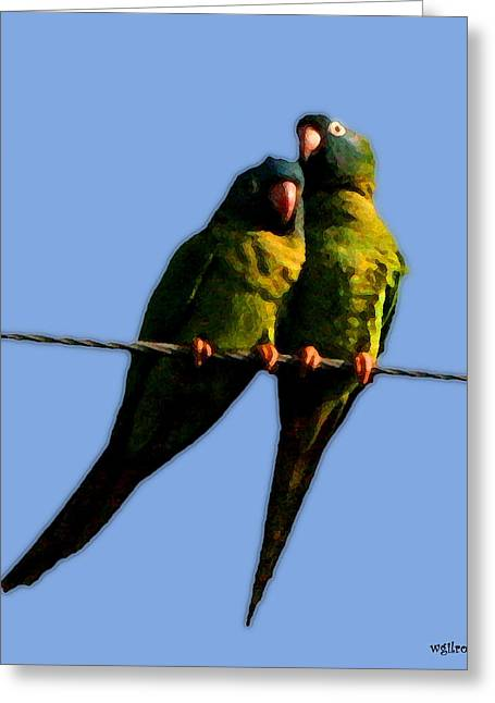 Tern Paintings Greeting Cards - Green Parrot Greeting Card by W Gilroy