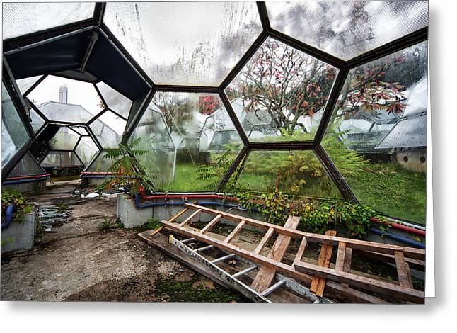 Experiment Greeting Cards - Greenhouse Experiment - Urban Decay Greeting Card by Dirk Ercken