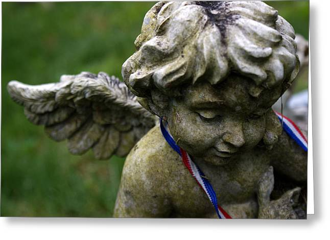 Guardian Greeting Card by Off The Beaten Path Photography - Andrew Alexander