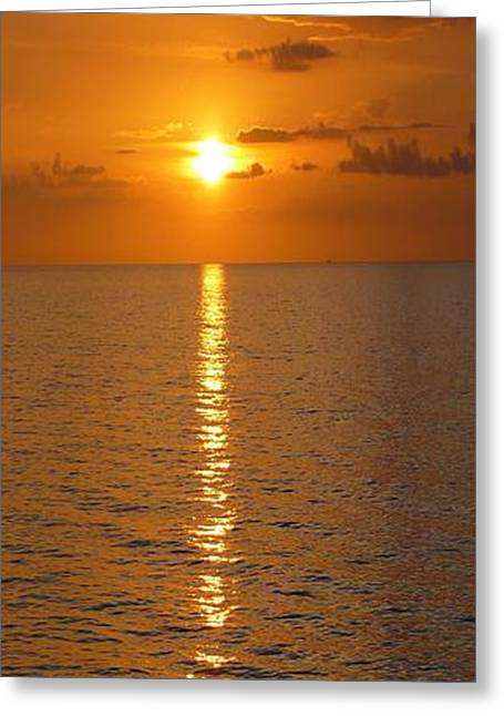 Ocean Art Photos Greeting Cards - Gulfsets II Greeting Card by Florene Welebny