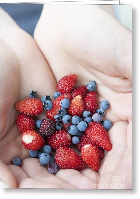 Hand-held Greeting Cards - Hands holding berries Greeting Card by Elena Elisseeva