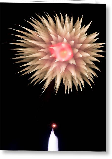4th July Greeting Cards - Happy Birthday USA-8 Greeting Card by Dale Looft
